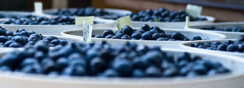 Blueberries often top the list for the dirtiest berries on the Dirty Dozen List.