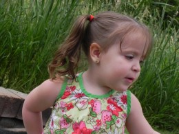 The original pic of my grand daughter. Earrings are green as well as the trim of her shirt. ponytail holder is orange.