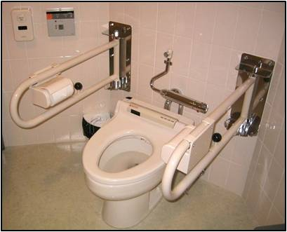 Grab bars around toilet.
