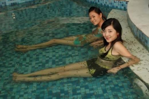 Full Body Fish Therapy with Garra Rufa
