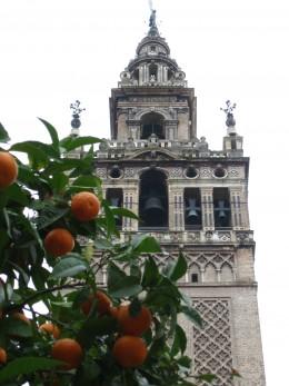 Teaching in Spain allowed me to see the Giralda...