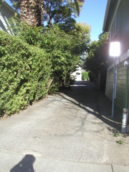 Alley way behind the house.  the house is just to the left of the hedge row.