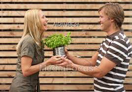 The care of your house plant can be a shared, fun activity!