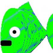 bjtutu profile image
