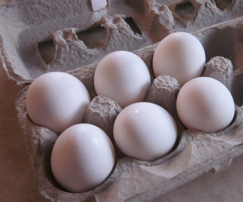 Use Fresh Eggs