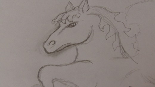 The head is important as it has to resemble a Ponies head and also draw in the eye and a line which helps place a bridge pointing to the nostrils.