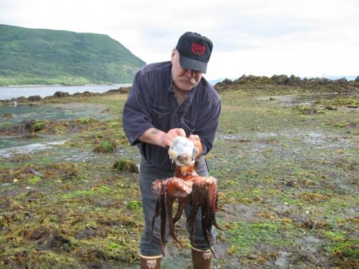Terminating an octopus.
