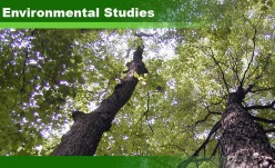 Environmental Studies 6