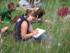 Environmental Studies 7