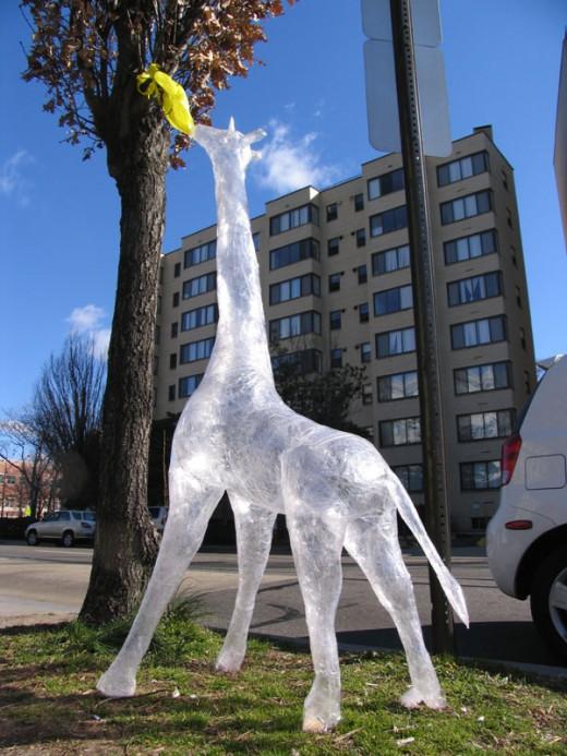DC Giraffe by Mark Jenkins