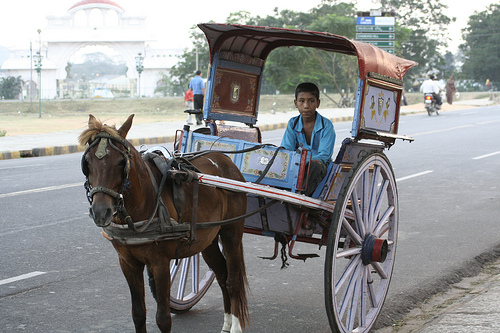 Tanga - a horse driven carriage - used in India quite often.