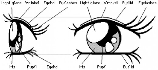 One Style Of Manga Eyes
