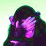 nebaker profile image
