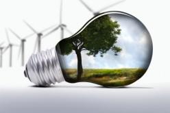 Environmental Studies 8