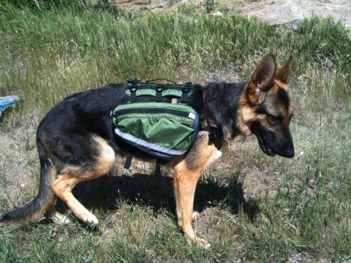 Granite Gear Alpha Dog Backpack