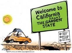 California The Nanny State