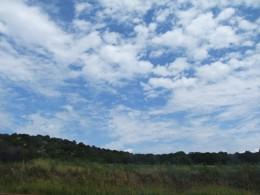 Landscape near Payson, Arizona