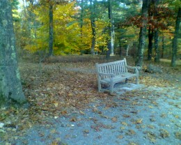 A bench to sit on while my daughter plays at Tower  Hill Botanical Garden