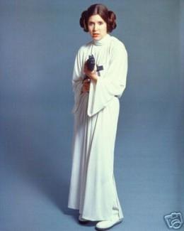 Princess Leia (animus) & Luke Skywalker (anima)