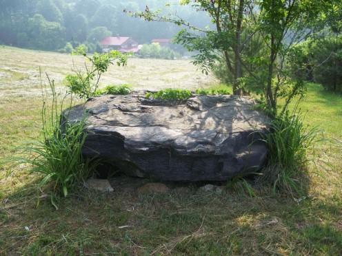 Micky's Rock