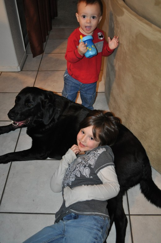 Having a dog is a great way to not only teach kids responsibilty, but they can be a lifelong friend as well!