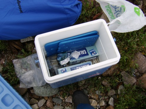 Bait will have to be arranged for your fishing trip and a practical means of transport and storage determined