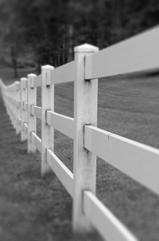 Fencing Forever Day 7