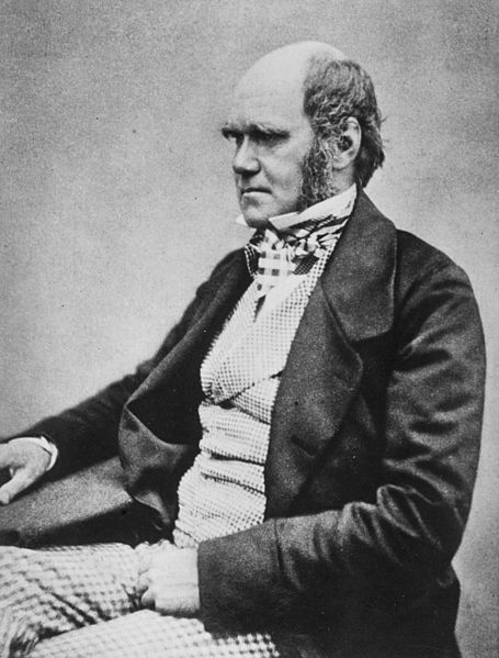 Public Domain. See: http://en.wikipedia.org/wiki/File:Charles_Darwin_seated_crop.jpg