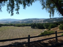 The Santa Ynez Valley.