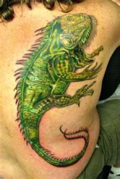 3d Cute Gecko Lizard Tattoos