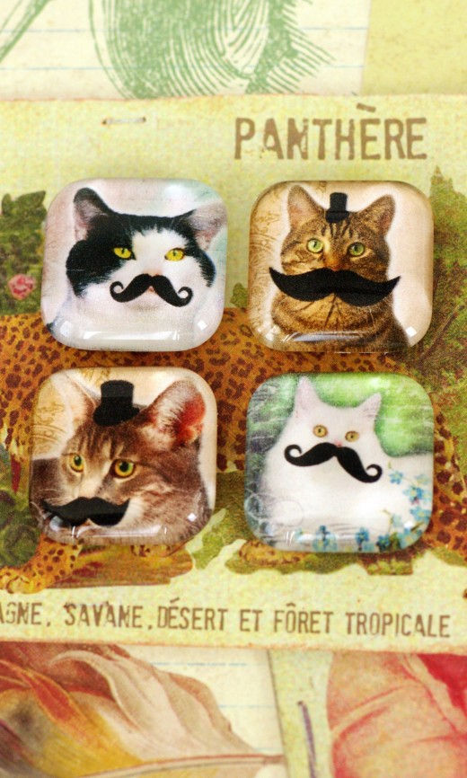 Cat Manchu Magnets