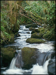 Babbling Brook from Phil Burns Source: flickr.com