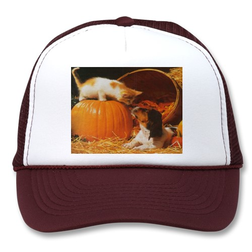This cute kitten and puppy are a great item for Halloween and an Autumn hat gift. This is the only hat  shown here from my Sandyspider Gifts shop. All the others come from the one listed above. Buy this hat by clicking on the link.