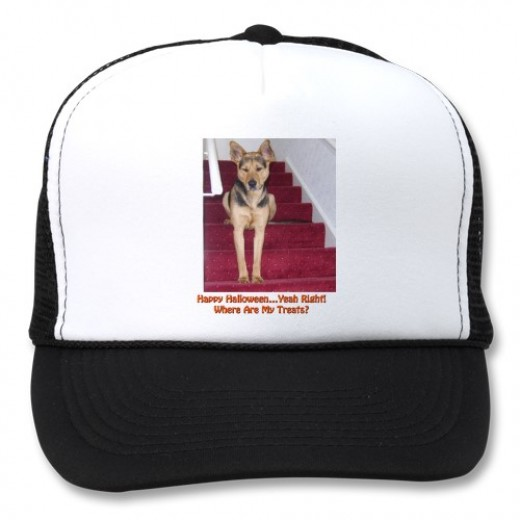 "Gordon Hamilton on HubPages has a very intelligent dog name Robbie. The caption on the hat is ""Happy HalloweenYeah Right! Where are My Treats?"" Gordon writes about Robbie in his hub, ""It's A Dog's Life: Even the Most Intelligent Dogs Know Some Canine"