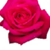 seyoni profile image