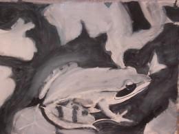 black&white frog by Loren A Belo