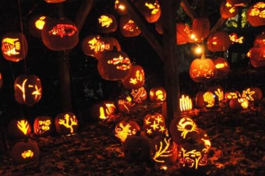 where did halloween originate halloween 39 s pagan origins. Black Bedroom Furniture Sets. Home Design Ideas