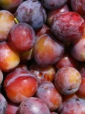 Pluots: combination between plums and apricots