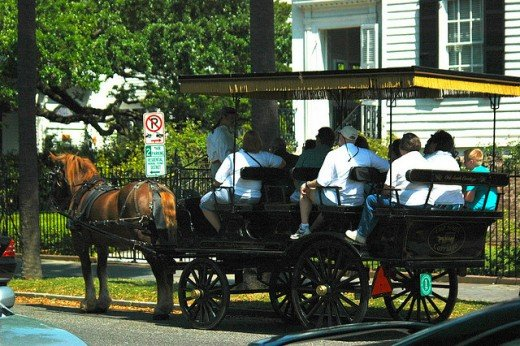 The Horse Carriage Ride through downtown Charleston is one of the best things to do in Charleston South Carolina.