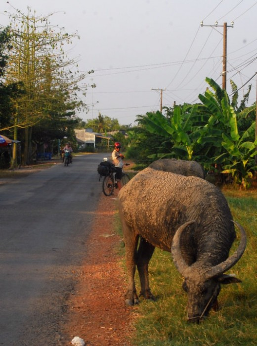 There's always plenty to see along the road in Vietnam.