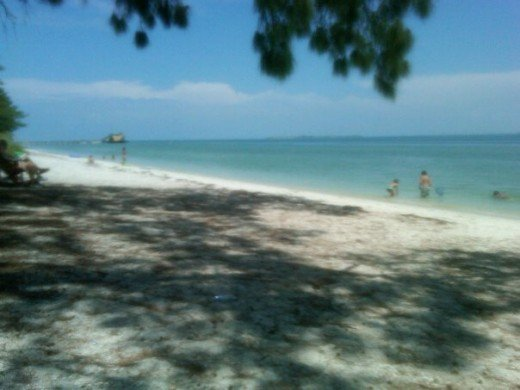 The shady beach at the north tip of Anna Maria Island.
