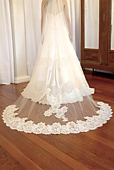 This Cathedral Length Veil is beautifully accented.