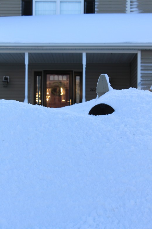 January snowcover, morning after the Jan 27th storm, thats the mailbox sticking out in the foreground!