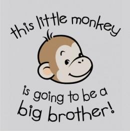 little monkey big brother