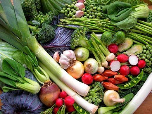 what vegetables should you plant - Home Vegetable Garden Design