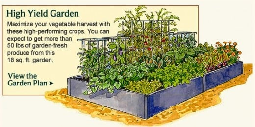 Vegetable garden planner layout design plans for small for Small permaculture garden designs