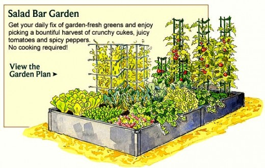 Best 25 Design Vegetable Garden Plot Vegetable garden plot