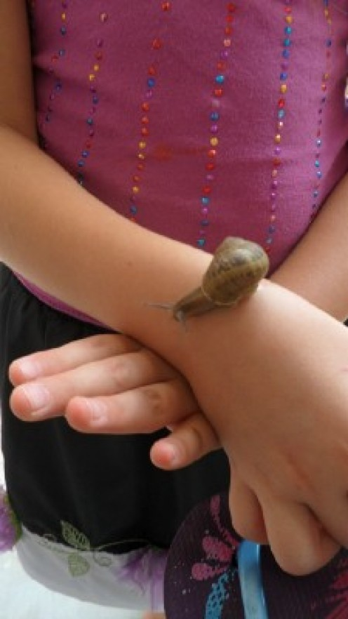 She finds a snail and is full of wonder.