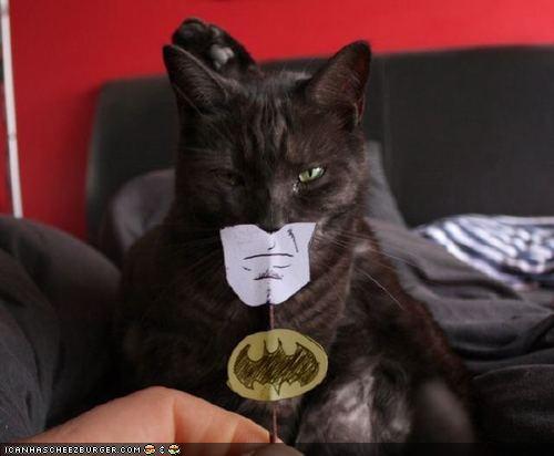 Nananananananananana CATMAN!