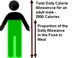Food Labels - New Guide Uses a Fuel Gauge for Daily Calorie Allowances